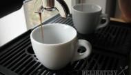 kava-titulna