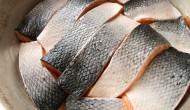 Natesno poukladané kúsky lososa